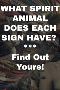 WHAT SPIRIT ANIMAL DOES EACH SIGN HAVE? 1