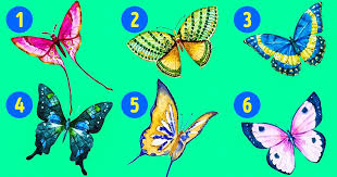 Choose a Butterfly, Find Out Something Interesting About Your Personality 1