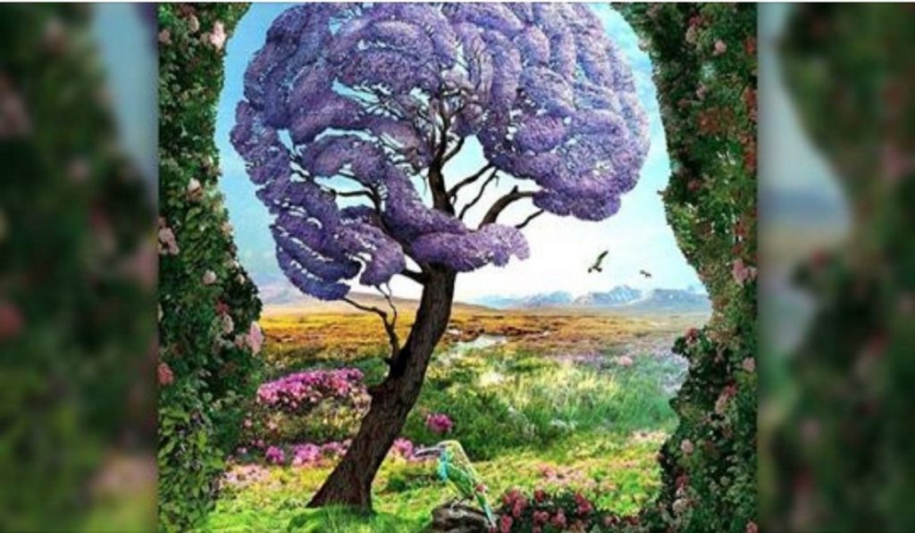 What Do You See First in this Picture? Reveals an Unconscious Secret of Your Personality! 1