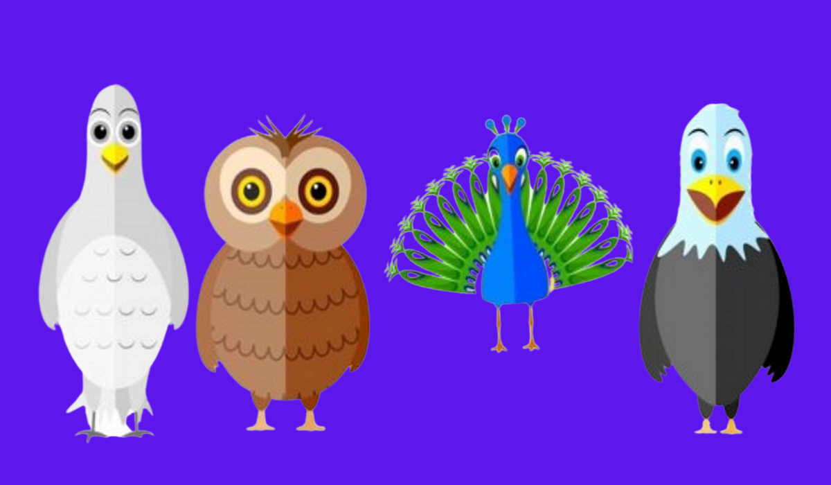 Pick a Bird! It Will Tell You Something Shocking About Your Personality