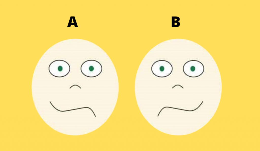 Which of Your Brain Part Dominates Your Personality? 1