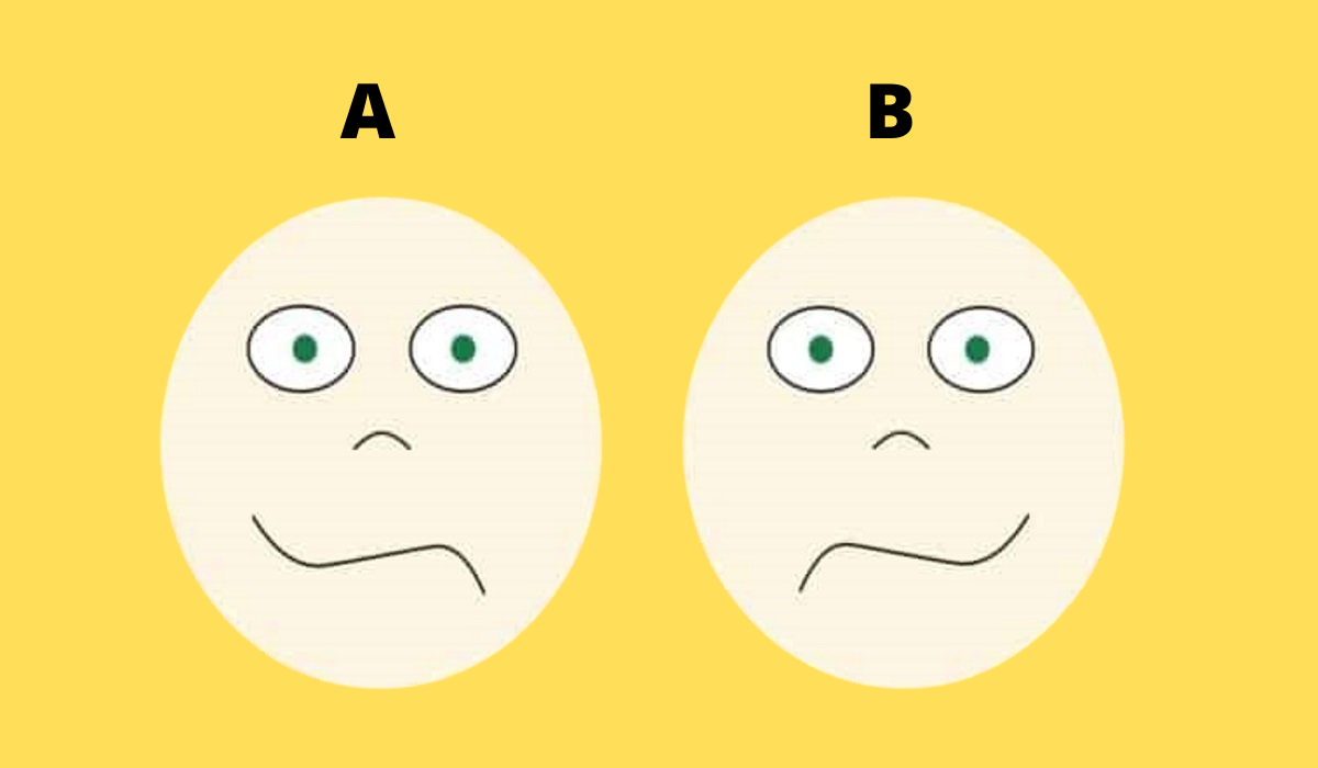 Which of Your Brain Part Dominates Your Personality?