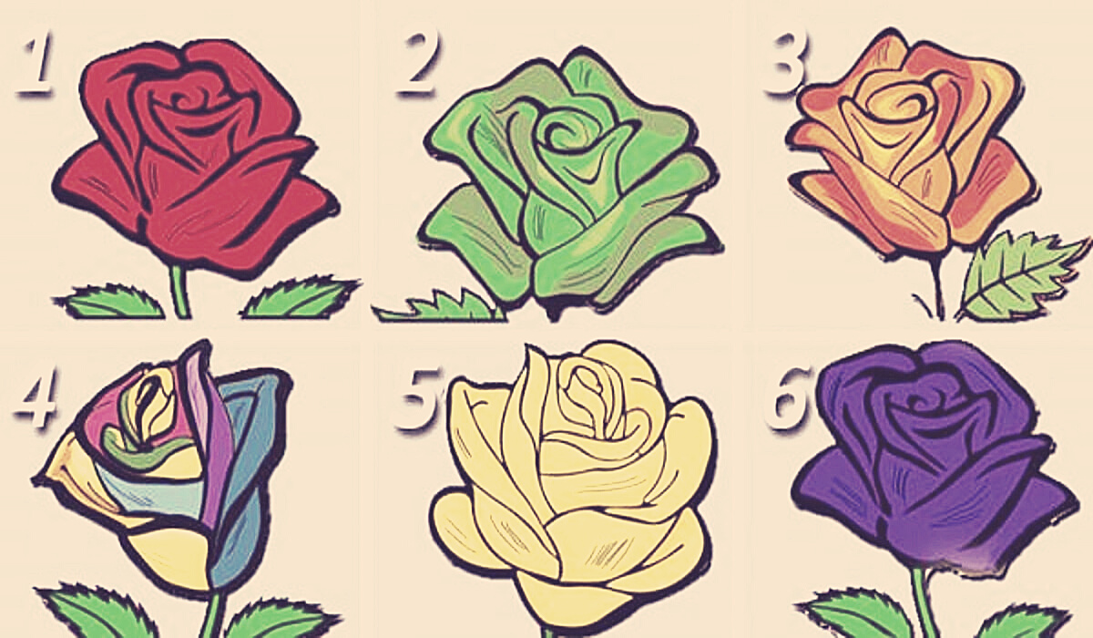 Which Rose Do You Like? It Reveal Many Things About You…
