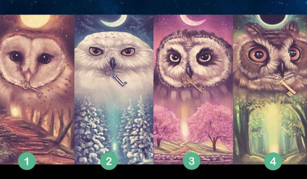 Pick a Mystic Owl and Find Out the Truth About Yourself! 1