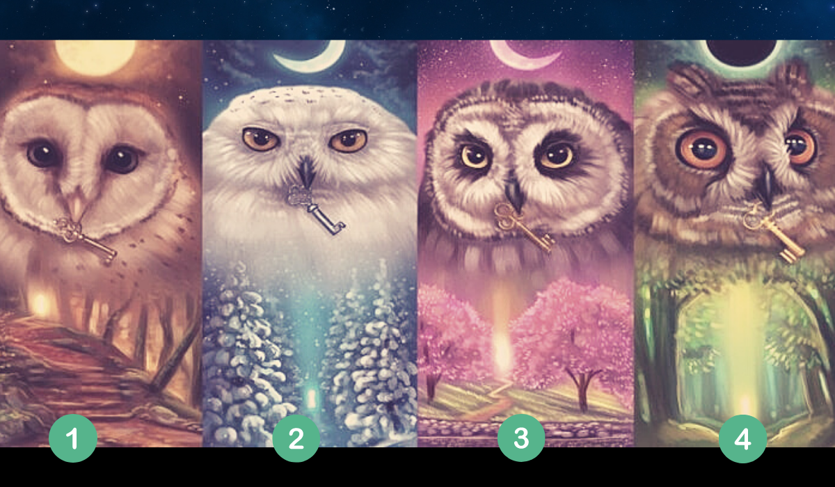 Pick a Mystic Owl and Find Out the Truth About Yourself!