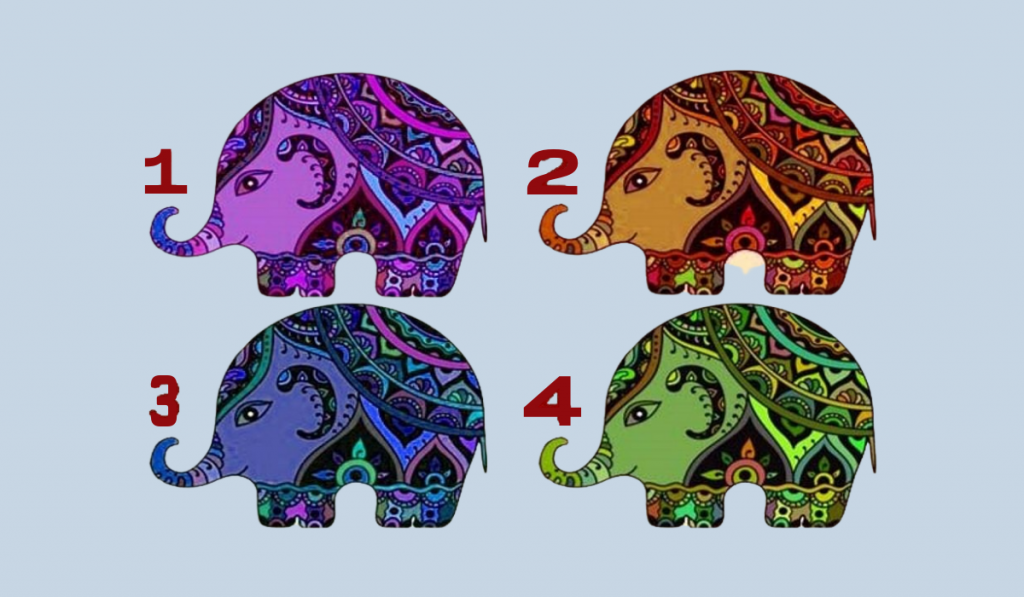 Test: Choose an Elephant! Discover What Your Strength Is: 1