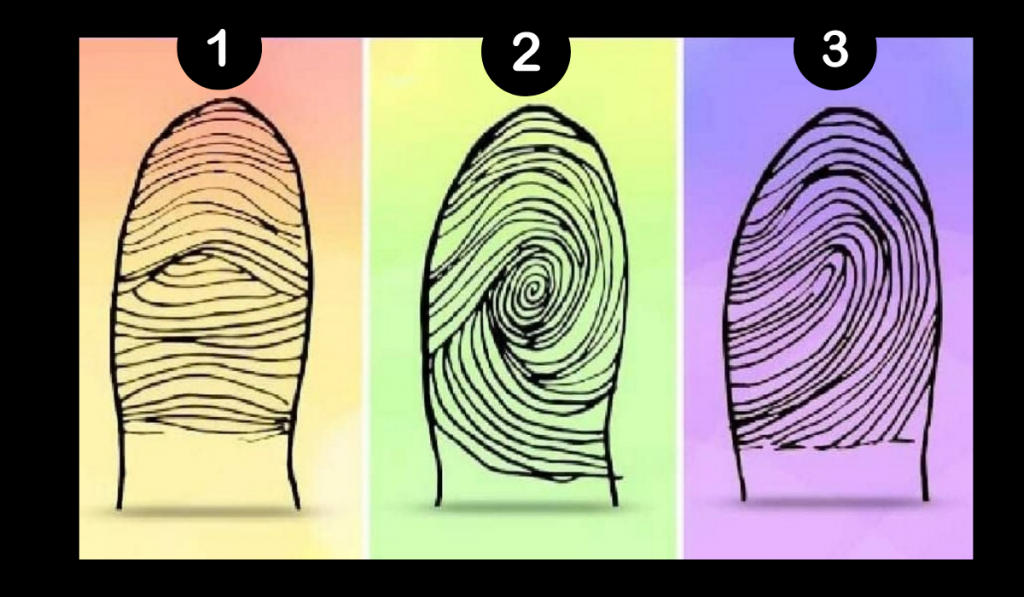 Your Fingerprints Say a Lot About You! Which Is Yours? 1